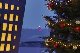 Ingelheim am Rhein: Unterhaltsame Winter-Walk-Weihnachtsfeier