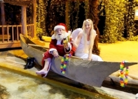 Bremerhaven: Weihnachten unter Palmen?