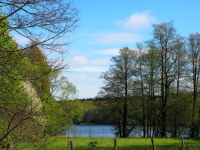 Berlin: WM im Wald – Private Viewing in Paulsborn am Grunewaldsee