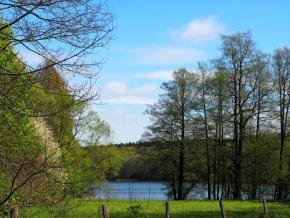 Berlin: WM im Wald – Private Viewing in Paulsborn am Grunewaldsee