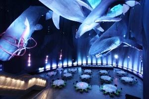 Stralsund: Weihnachten unter den Walen