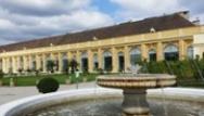 Wien: Neue Location – Orangerie Schönbrunn mit Pflanzenorangerie