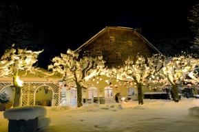 Salzburg: Festlich köstlich – Ihre Weihnachtsfeier im Schlosswirt zu Anif