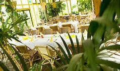 Überregional: Pierre & Vacances Center Parcs Groupe - Afrikanischer Wintergarten Park Bispinger Heide