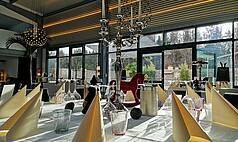 Eppstein bei Frankfurt: BOTANICAL - SunnySide XMAS