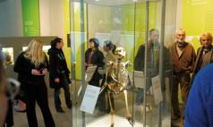 Mettmann Neanderthal Museum In der Ausstellung